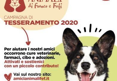 """Savuto: l'Associazione """"Amici Animali di Franco e Fufi"""" è concreta assistenza per cani e gatti"""