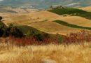 PSR: oltre sei milioni di euro per il finanziamento di progetti legati allo sviluppo rurale